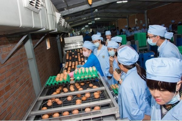 Công ty TNHH TMDV Sản xuất và chăn nuôi Thanh Đức