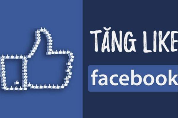 Chạy Quảng Cáo Tăng Like Fanpage Trên Facebook